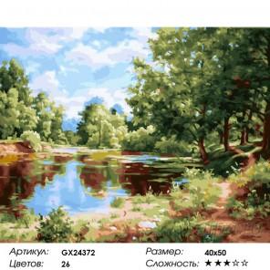Деревья у пруда Раскраска картина по номерам на холсте