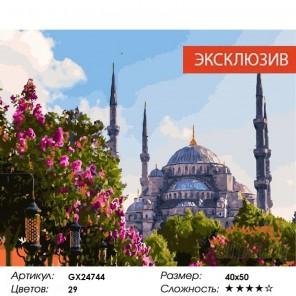 Полдень в Стамбуле Раскраска картина по номерам на холсте