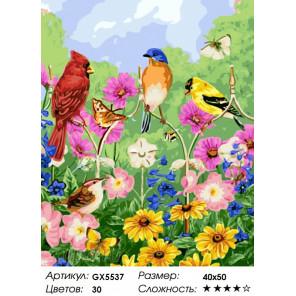 Количество цветов и сложность Птички, бабочки, цветы Раскраска по номерам на холсте Menglei Z-GX5537