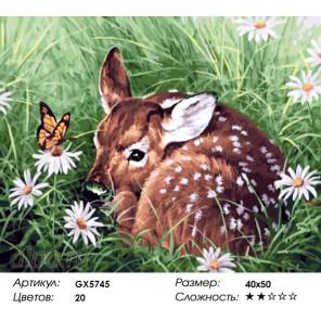 Количество цветов и сложность Олененок Раскраска по номерам на холсте Menglei Z-GX5745