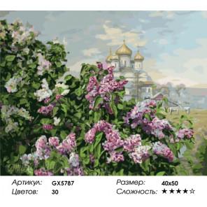Количество цветов и сложность Сиреневый май Раскраска по номерам на холсте Menglei Z-GX5787