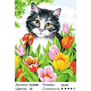 Котенок в тюльпанах Раскраска картина по номерам акриловыми красками на холсте Menglei