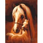 Лошадь и жеребёнок Раскраска картина по номерам акриловыми красками на холсте Menglei