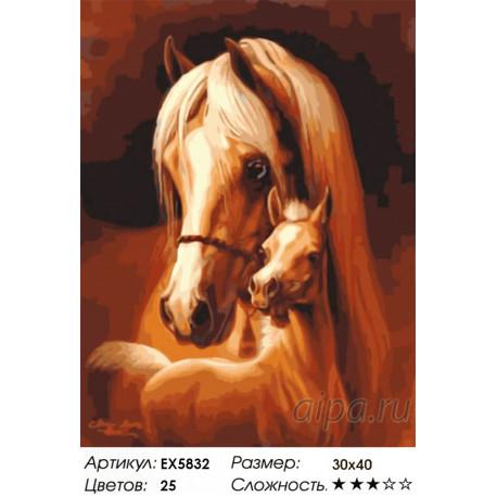 Количество цветов и сложность Лошадь и жеребёнок Раскраска картина по номерам акриловыми красками на холсте Menglei Z-EX5832