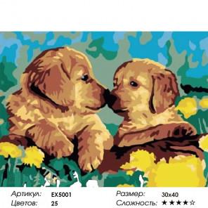 Количество цветов и сложность Милые щенки Раскраска картина по номерам акриловыми красками на холсте Menglei Z-EX5001