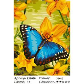 Бабочка на желтом цветке Раскраска картина по номерам акриловыми красками на холсте Menglei