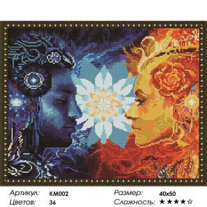 Количество цветов и сложность Инь-Янь Алмазная мозаика на подрамнике KM002