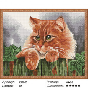 Количество цветов и сложность Рыжик Алмазная мозаика на подрамнике KM003