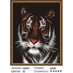 Портрет тигра Алмазная мозаика на подрамнике
