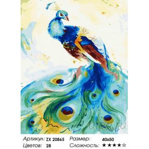 Количество цветов и сложность Разноцветный павлин Раскраска картина по номерам на холсте ZX 20865
