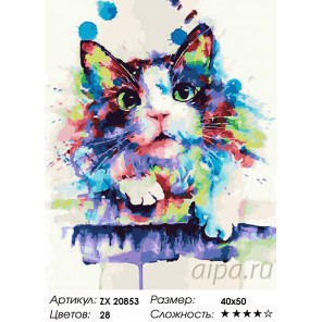 Радужный котик Раскраска картина по номерам на холсте