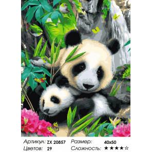 Количество цветов и сложность Пандочки Раскраска картина по номерам на холсте ZX 20857