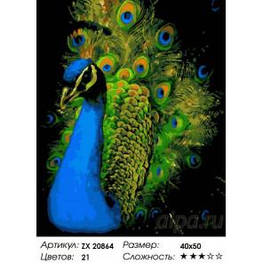 Величавый павлин Раскраска картина по номерам на холсте ZX 20864