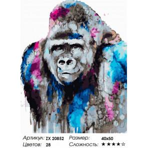 Количество цветов и сложность Горилла Раскраска картина по номерам на холсте ZX 20852
