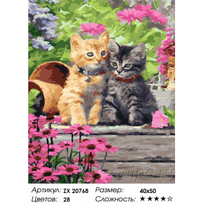 Дружные котята Раскраска картина по номерам на холсте