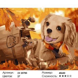 Количество цветов и сложность Собачка и белка Раскраска картина по номерам на холсте ZX 20785