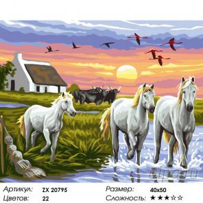 Количество цветов и сложность Резвые скакуны Раскраска картина по номерам на холсте ZX 20795