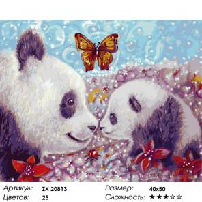 Количество цветов и сложность Нежные панды Раскраска картина по номерам на холсте ZX 20813