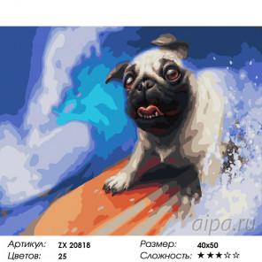 Количество цветов и сложность На гребне волны Раскраска картина по номерам на холсте ZX 20818