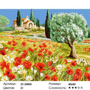 Количество цветов и сложность Поле с маками и ромашками Раскраска картина по номерам на холсте ZX 20800