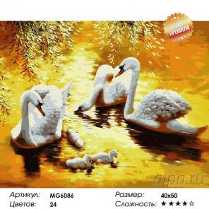 Лебеди в золоте заката Раскраска картина по номерам на холсте MG6086