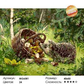 Количество цветов и сложность Любопытный еж Раскраска картина по номерам на холсте MG6081