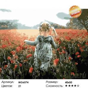 Количество цветов и сложность Прогулка среди маков Раскраска картина по номерам на холсте MG6074