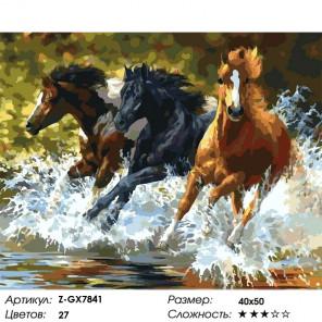 Количество цветов и сложность Дикие кони Раскраска картина по номерам на холсте Z-GX7841