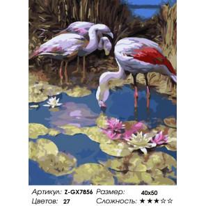 Количество цветов и сложность Фламинго Раскраска картина по номерам на холсте Z-GX7856