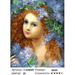 Количество цветов и сложность Новорождённая Весна Раскраска картина по номерам на холсте Z-GX8259