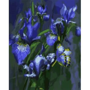 Голубая богиня Раскраска картина по номерам на холсте Z-GX8236