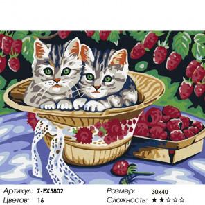 Количество цветов и сложность Котята в под малиной Раскраска картина по номерам на холсте Z-EX5802
