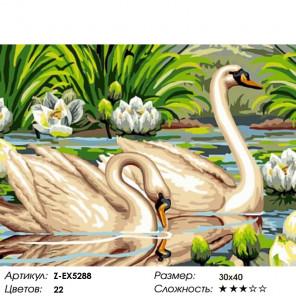 Количество цветов и сложность Лебеди и лотосы Раскраска картина по номерам на холсте Z-EX5288