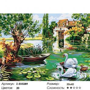 Количество цветов и сложность Лебединое счастье Раскраска картина по номерам на холсте Z-EX5289