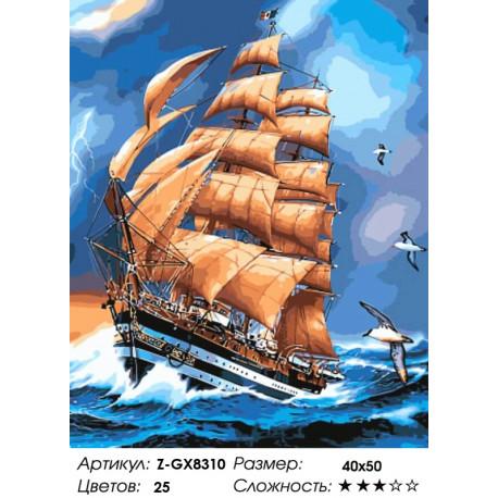 Количество цветов и сложность Америго Веспучи Раскраска картина по номерам на холсте Z-GX8310