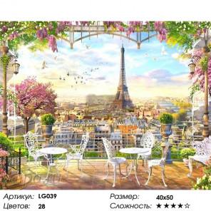 Количество цветов и сложность Парижская терраса Алмазная мозаика на подрамнике LG039
