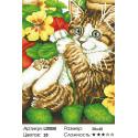 Количество цветов и сложность Игривый котенок Алмазная вышивка мозаика LZE050