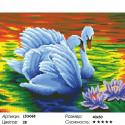 Количество цветов и сложность Прекарсные лебеди Алмазная вышивка мозаика LZG068