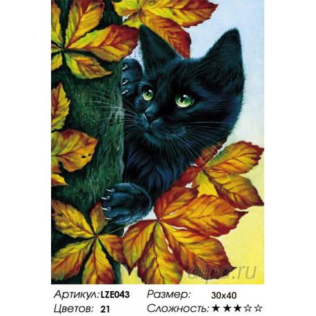 Количество цветов и сложность Черный кот Алмазная вышивка мозаика LZE043