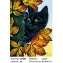 Черный кот Алмазная вышивка мозаика