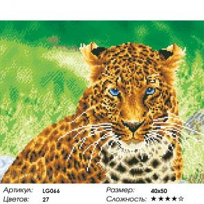 Количество цветов и сложность Дикая кошка Алмазная вышивка мозаика