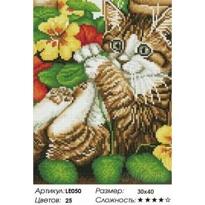 Количество цветов и сложность Игривый котенок Алмазная мозаика на подрамнике LE050