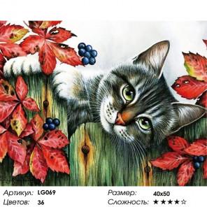 Количество цветов и сложность Котенок в саду Алмазная мозаика на подрамнике