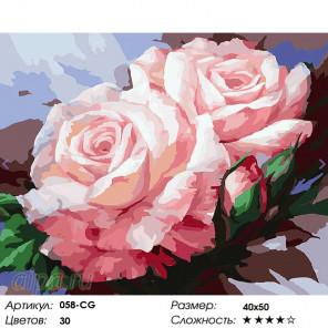 Количество цветов и сложность  Нежные розы Раскраска картина по номерам на холсте Белоснежка 058-CG