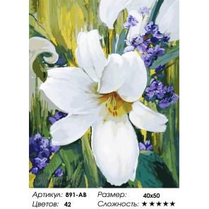 Лилия Раскраска картина по номерам на холсте Белоснежка