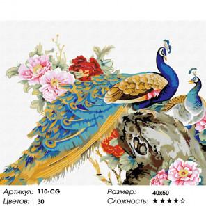 Количество цветов и сложность  Китайские павлины Раскраска картина по номерам на холсте Белоснежка 110-CG