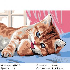 Кот чистюля Раскраска картина по номерам на холсте Белоснежка