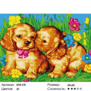 Количество цветов и сложность  Щенки на поляне Раскраска картина по номерам на холсте Белоснежка 010-CE