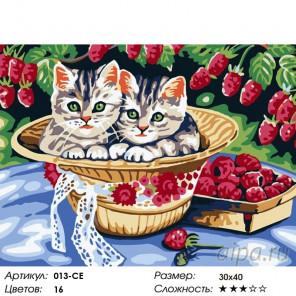 Котята в саду Раскраска картина по номерам на холсте Белоснежка