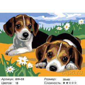 Щенки на лужайке Раскраска картина по номерам на холсте Белоснежка